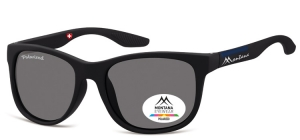 MS313A;;